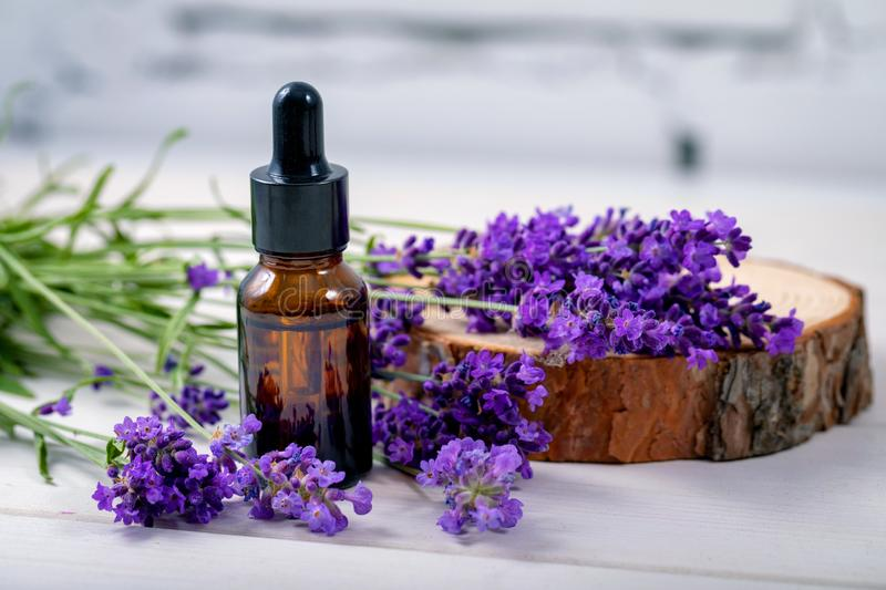Lavender herbal oil and flowers on wooden background stock photography