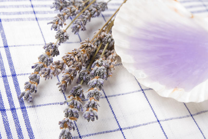 Download Lavender Massage Oil Royalty Free Stock Image - Image: 18115356