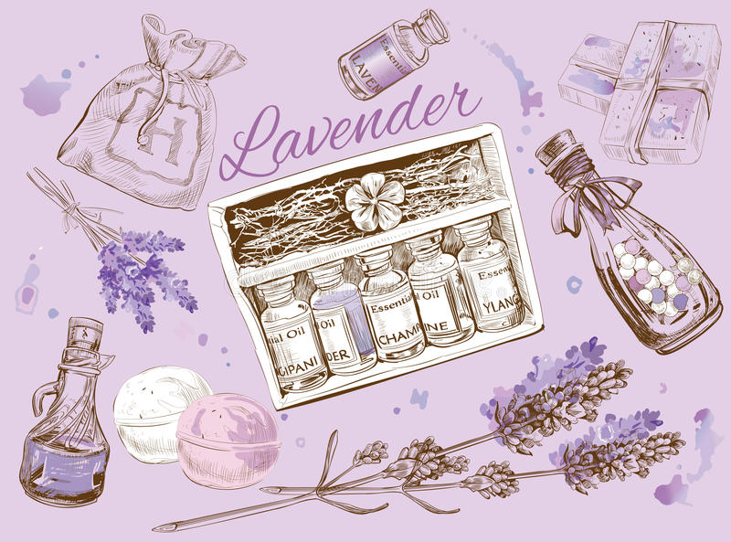 Lavender natural cosmetic set. vector illustration