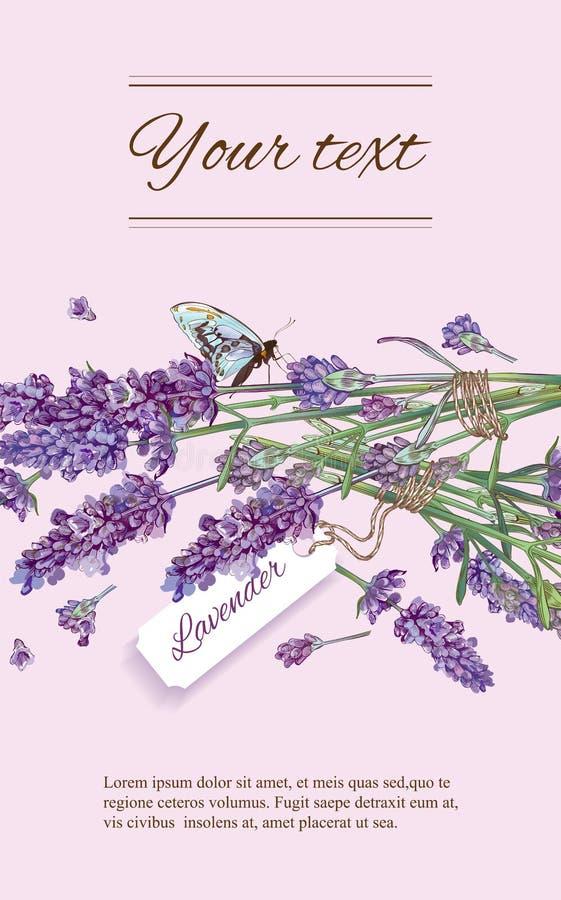 Lavender natural cosmetics banner vector illustration
