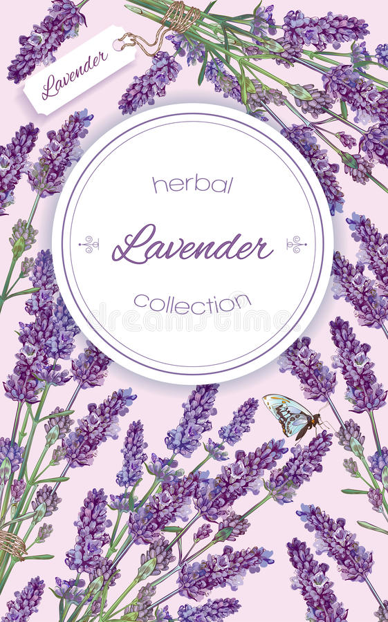 Lavender natural cosmetics banner royalty free illustration