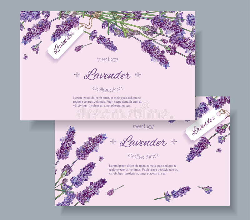 Lavender natural cosmetics banners vector illustration
