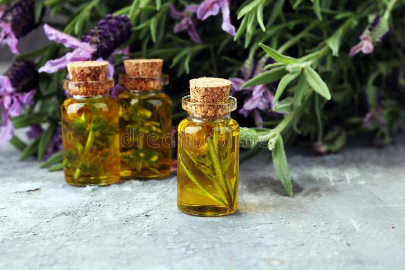 Lavender oil in a glass bottle on a background of fresh flowers. Lavender oil in a glass bottle on a background of fresh flowers stock photo