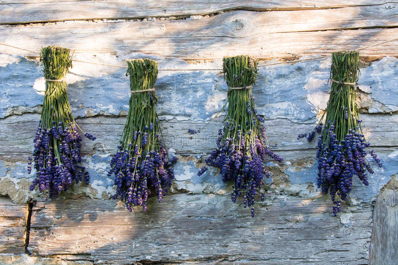 Lavender and old boards royalty free stock photos