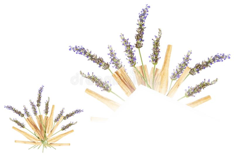 Lavender Palo Santo Bouquet Isolated stock image