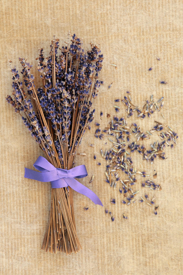 Download Lavender Posy stock image. Image of dried, paper, french - 39146973