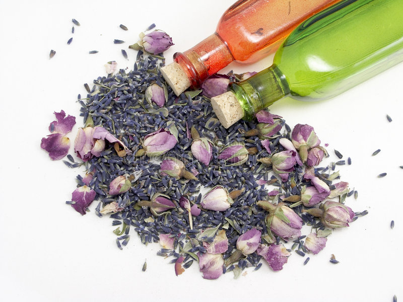 Lavender & Rose royalty free stock photography