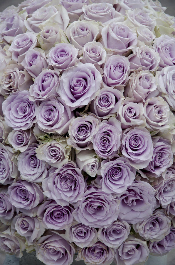 Lavender roses centerpiece flowers. Lavender rose flowers a close up of large bouquet of beautiful fresh soft purple roses royalty free stock image