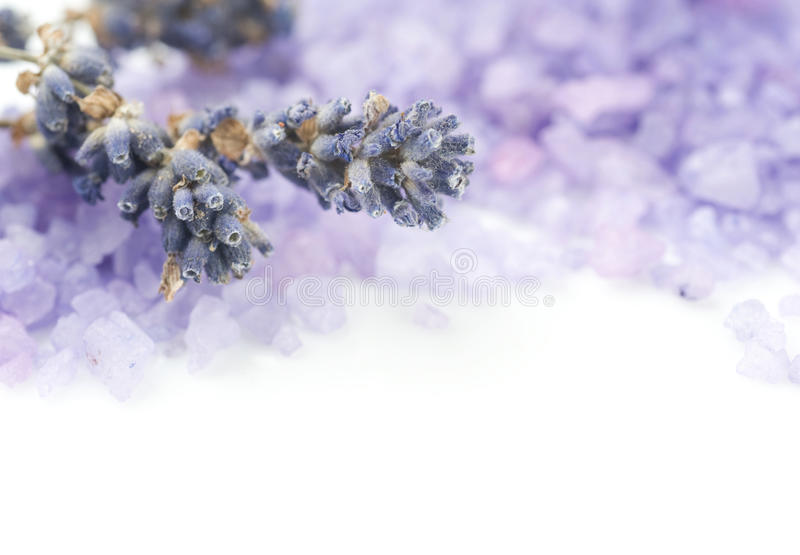 Lavender Spa Salt stock photography