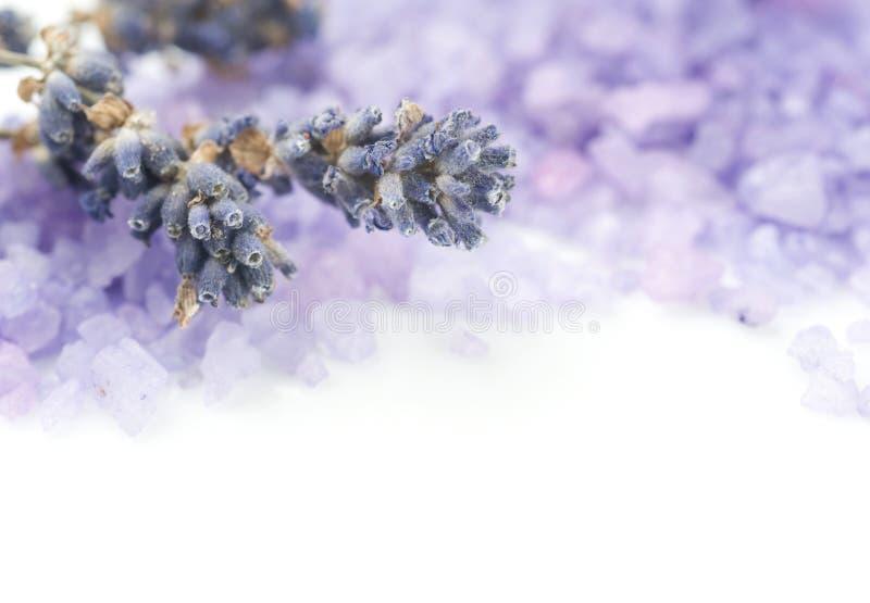 Lavender Spa Zout stock fotografie