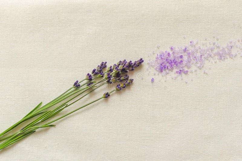 Lavender still life interior shot. Spoon royalty free stock photography