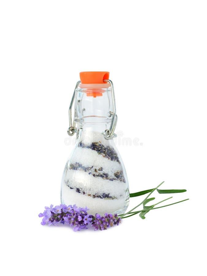 Lavender sugar royalty free stock photo