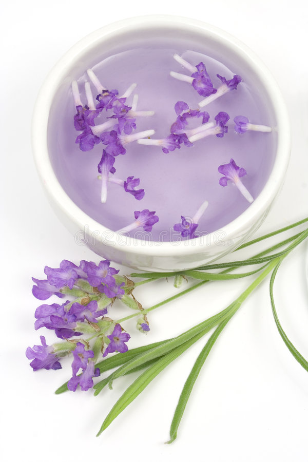 Lavender Tincture For Aromatherapy Stock Images