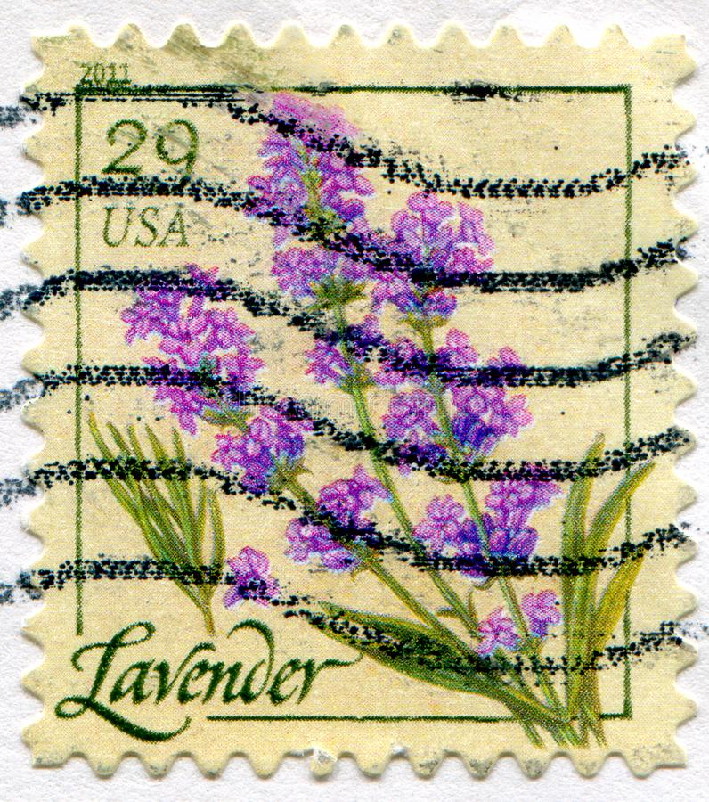 Lavender. UNITED STATES - CIRCA 2011: stamp printed by United States of America, shows lavender, circa 2011 stock photos