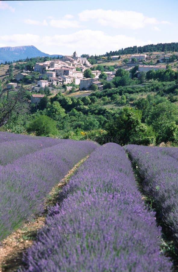 Lavender village stock photos