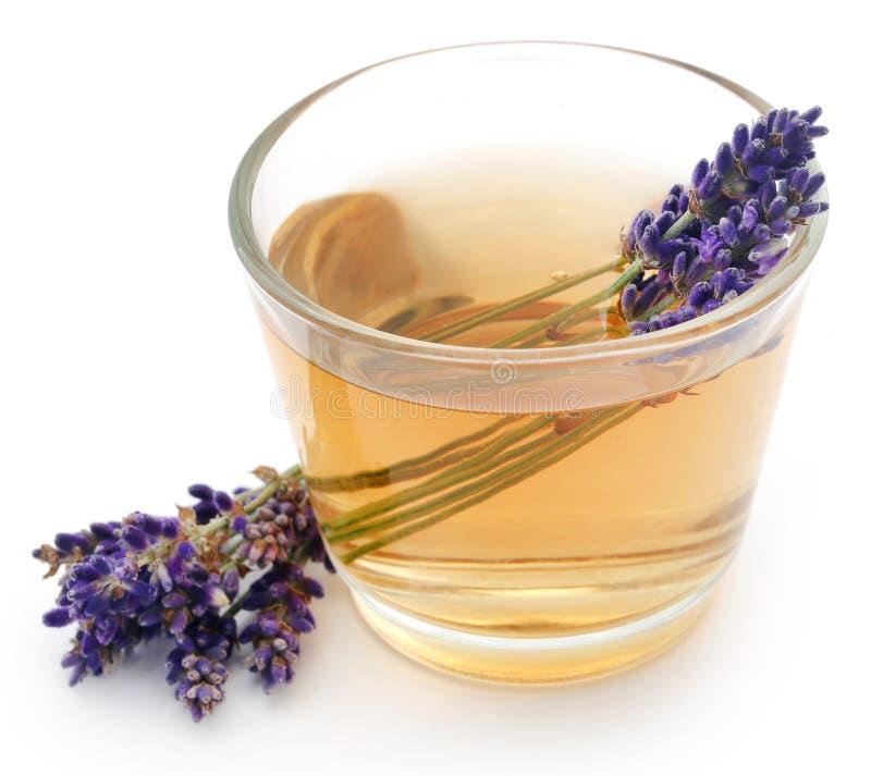 Lavenderthee met bloem stock foto