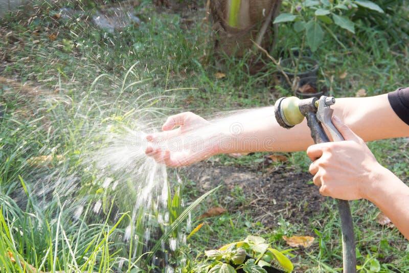 Lavez-vous les mains après plantation d'un arbre photos libres de droits