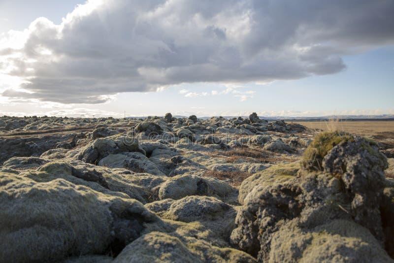 Lavlandscape Iceland royalty free stock photos