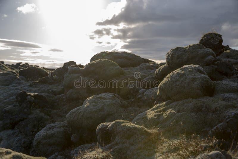 Lavlandscape Iceland stock photography