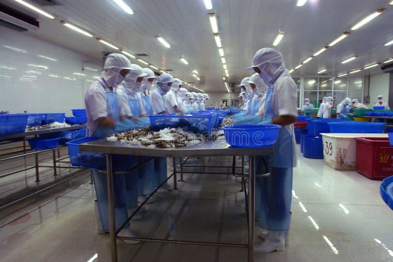 Lavorando ad una fabbrica dell'industria della pesca fotografie stock libere da diritti