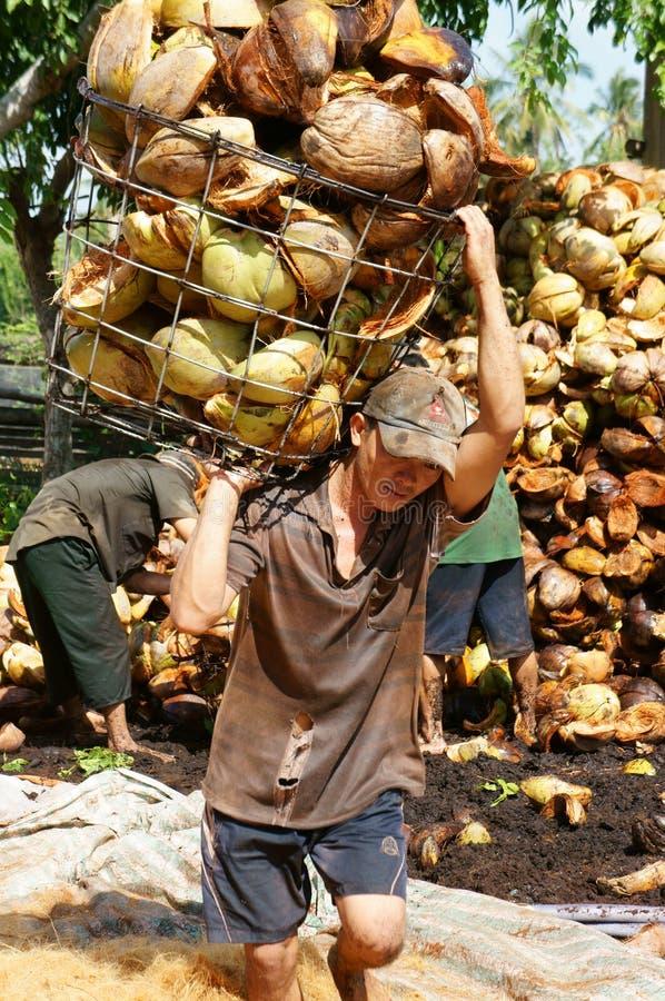 Lavoratore asiatico, industria della fibra di noce di cocco, vietnamita fotografia stock libera da diritti