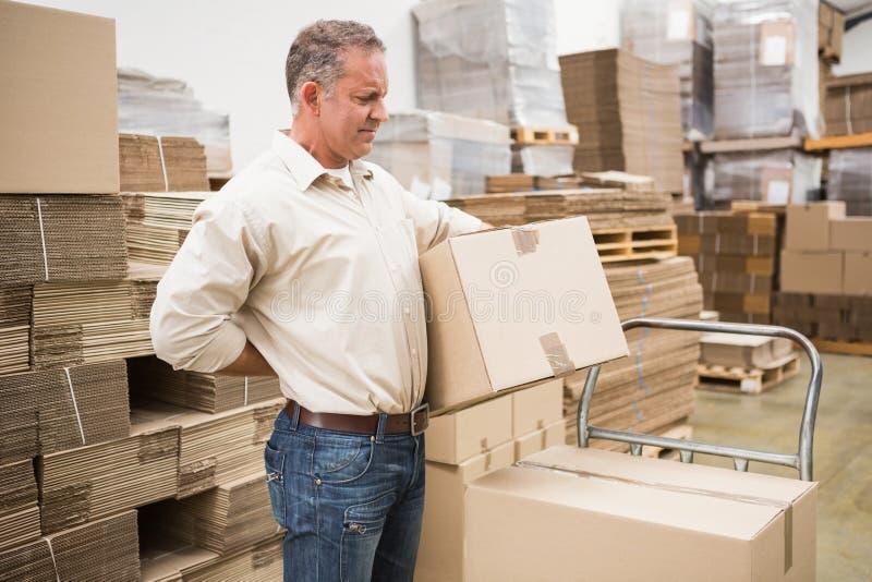 Lavoratore con il mal di schiena mentre sollevando scatola in magazzino immagini stock libere da diritti