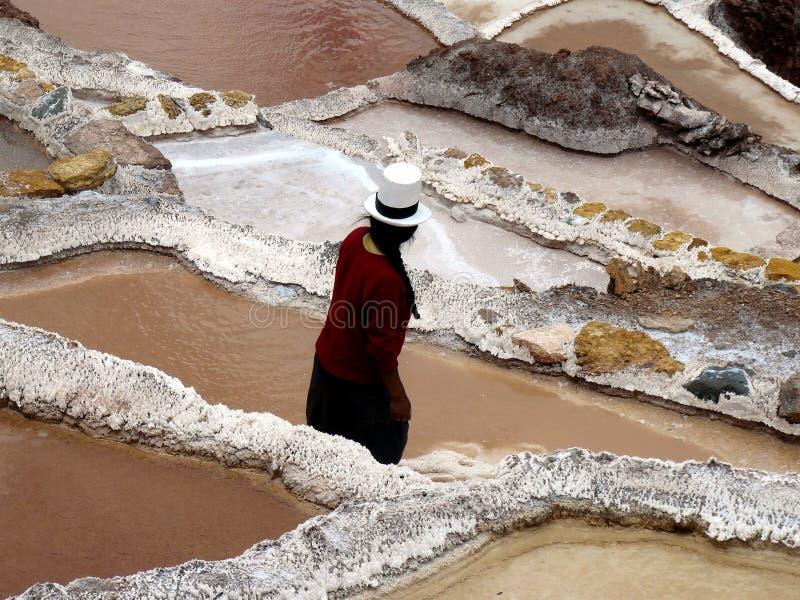Lavoratore della miniera di sale, saline (Perù) fotografia stock libera da diritti