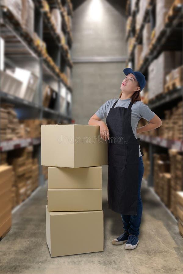 Lavoratore di sollevamento delle scatole del pacchetto del personale femminile che ha un mal di schiena nel magazzino immagini stock