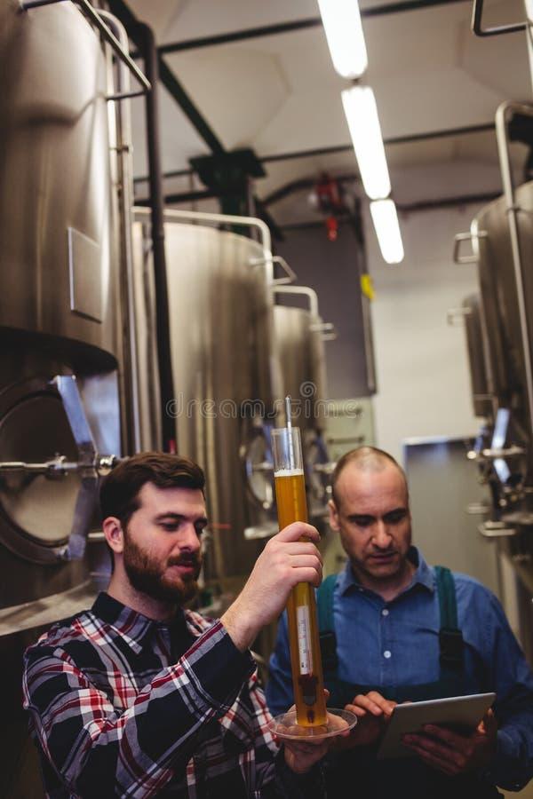 Lavoratore e proprietario che ispezionano birra alla fabbrica di birra fotografia stock libera da diritti