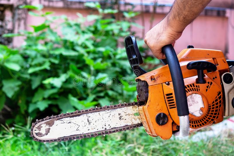 Lavoratore maschio che tiene piccola motosega a tagliare le piccole piante immagini stock