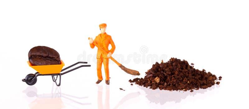 Lavoratore miniatura che lavora ad un chicco di caffè immagini stock libere da diritti
