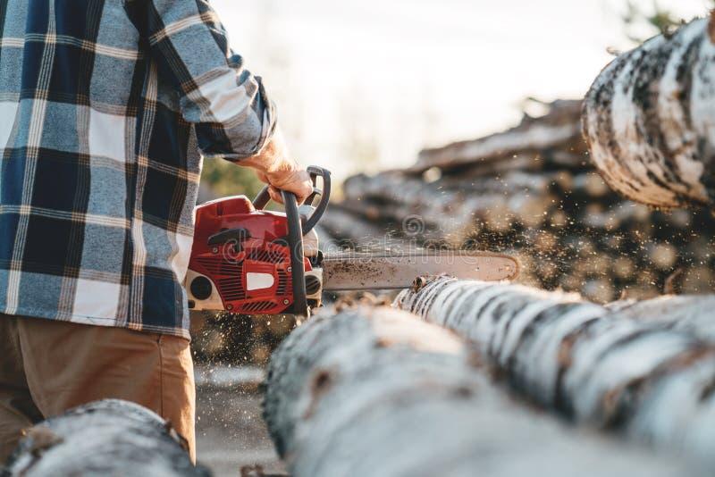 Lavoratore professionista del tagliaboschi che usando i chainas sulla segheria immagine stock libera da diritti