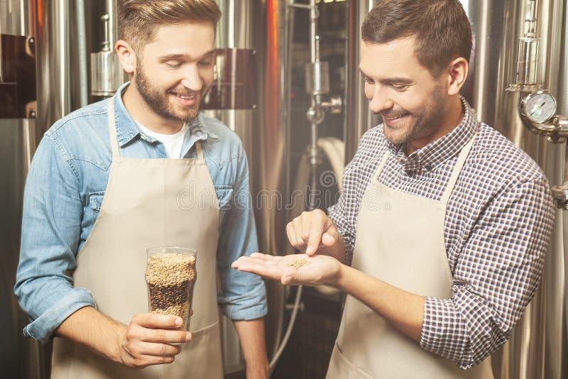 Lavoratori che esaminano i grani del luppolo per produzione della birra immagini stock libere da diritti