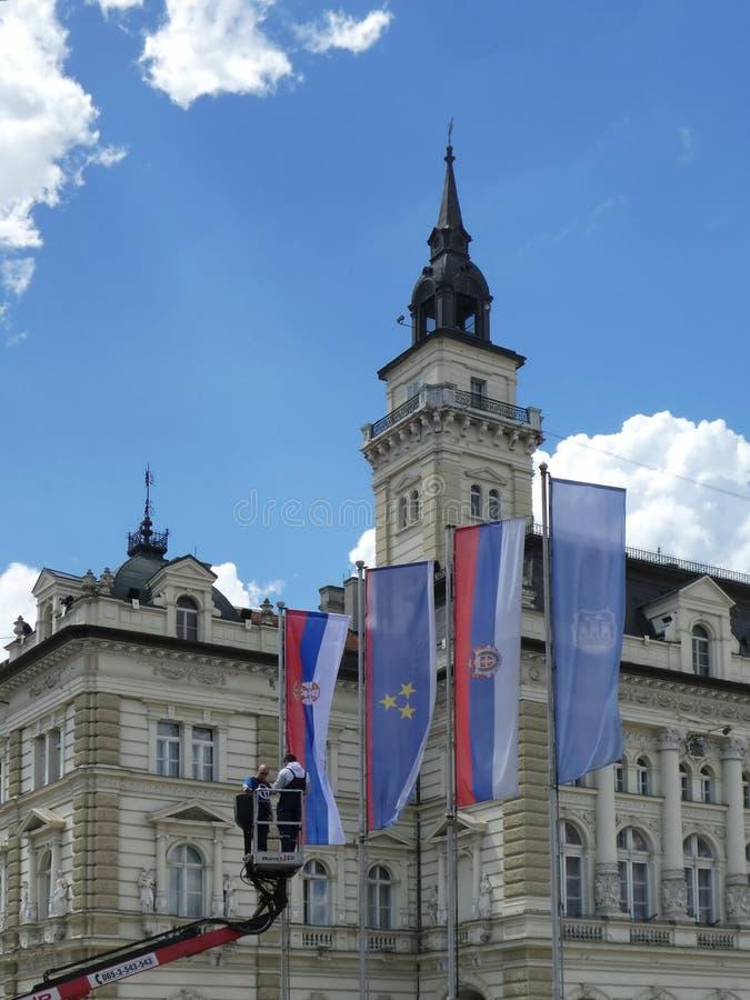 0190 - Lavoratori che mettono le bandiere sugli alberi al quadrato di città per la sfilata festiva a Novi Sad, Serbia fotografia stock libera da diritti