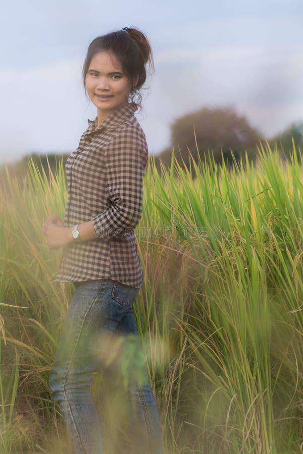 Lavoratrice agricola in campo di mais verde immagini stock