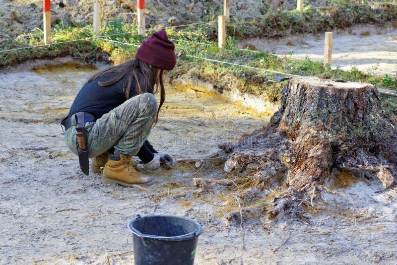 Lavoro archeologico di punto nella foresta fotografia stock