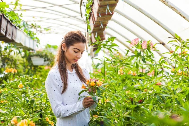 Lavoro con i vostri fiori favoriti immagine stock libera da diritti