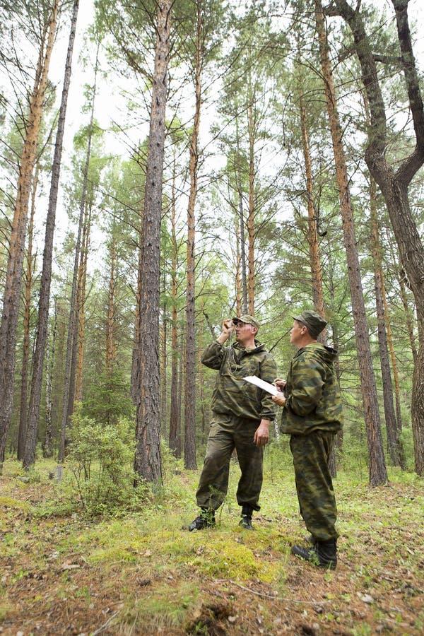 Lavoro degli ispettori della foresta nella foresta fotografie stock