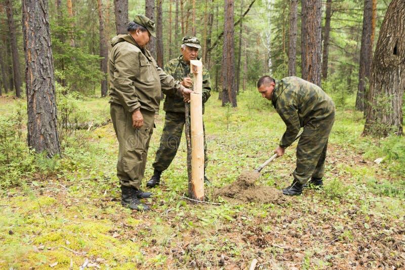 Lavoro degli ispettori della foresta nella foresta immagini stock libere da diritti