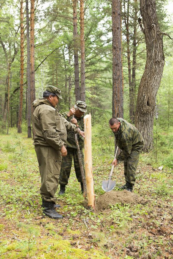 Lavoro degli ispettori della foresta nella foresta immagine stock libera da diritti