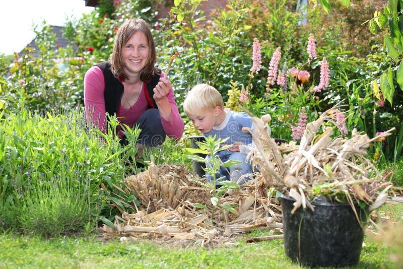 Lavoro del figlio e della donna nel giardino immagini stock