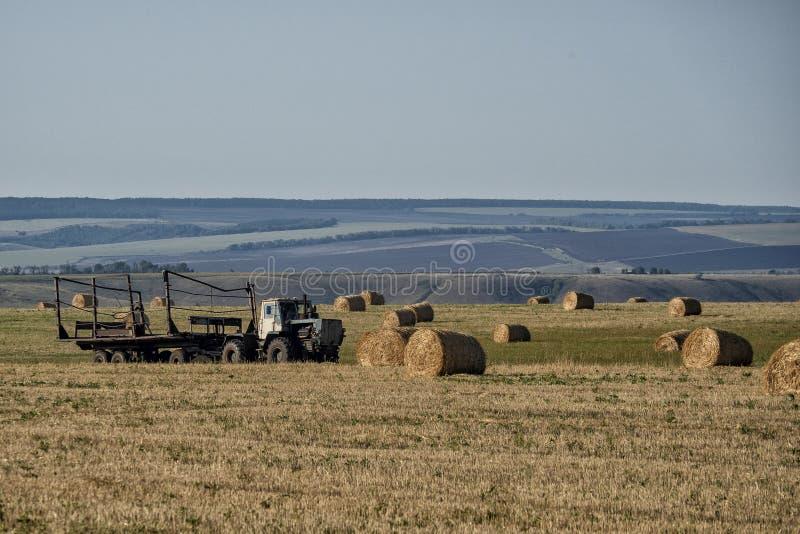 Lavoro dell'azienda agricola in autunno sul campo fotografia stock