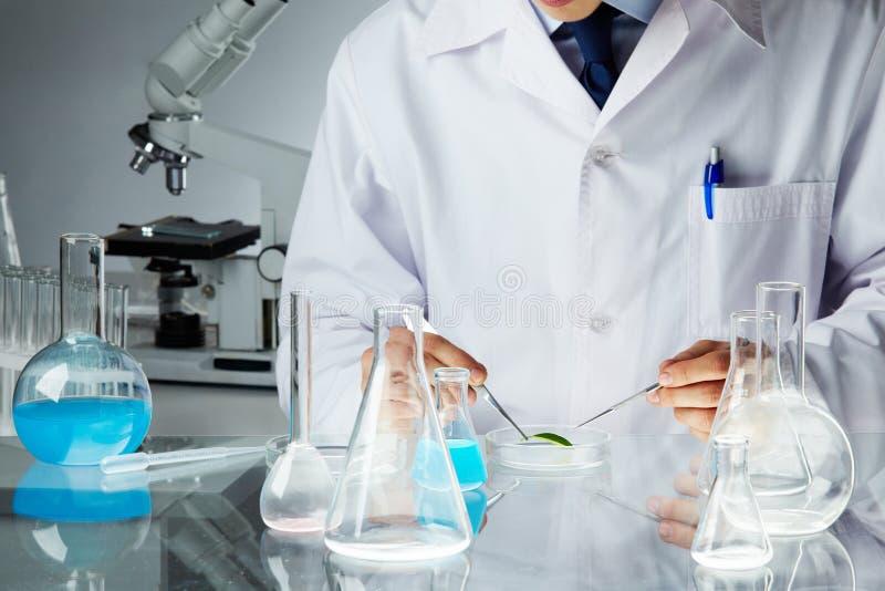 Lavoro scientifico immagine stock