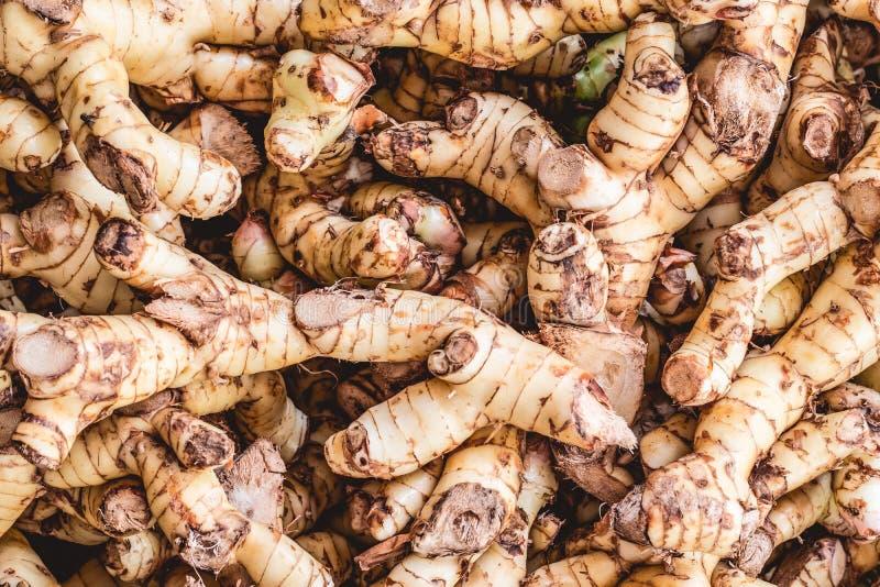 Lavou raizes frescas do gengibre fotografia de stock