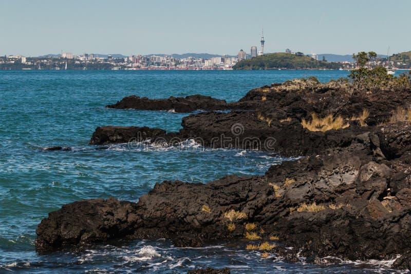 Law skały przy Rangitoto wyspą zdjęcia royalty free