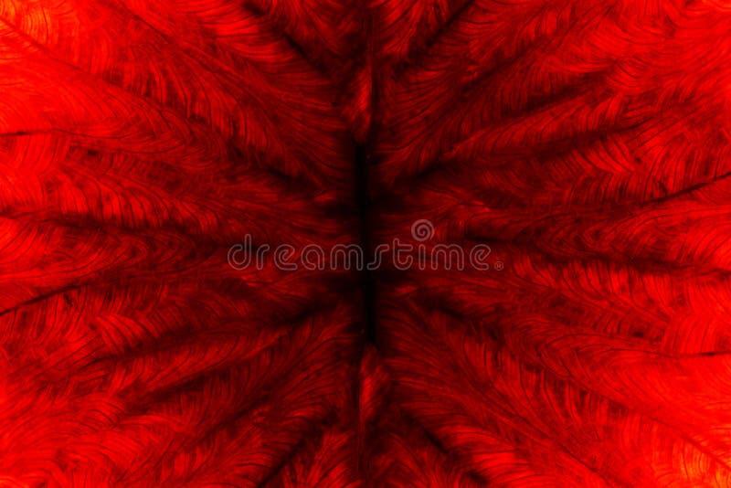 Lawa ogienia oparzenie liścia tło ilustracja wektor