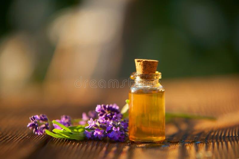 Lawenda istotny olej w pięknej butelce na stole zdjęcie stock