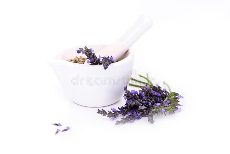 Lawenda kwiaty, lavander ekstrakt i montar z suchymi kwiatami odizolowywającymi na bielu, zdjęcia stock