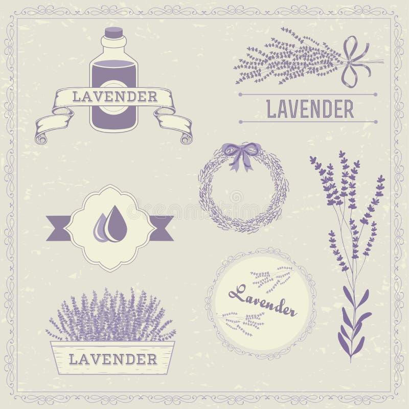 Lawenda, Odosobniony ziele ilustracji