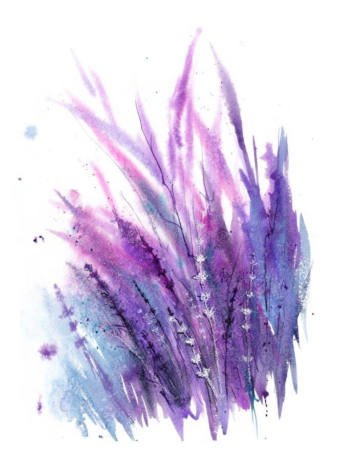 Lawenda wiatr Akwareli ilustracja z purpurami, bzem, zmrokiem i białymi sprigs lawenda, zdjęcia stock